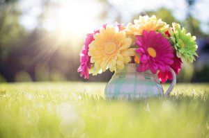 flowers-in-pitcher-796516_1280